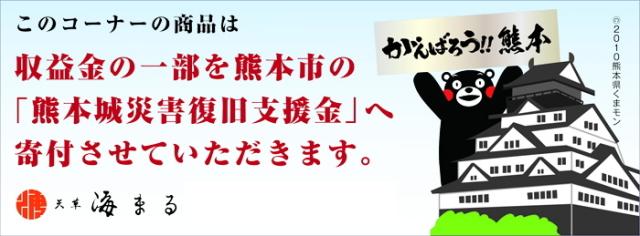 熊本城災害復旧支援